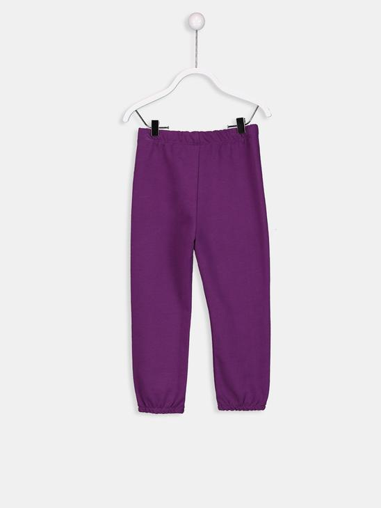 PURPLE - Sweatpants - 8W1638Z1