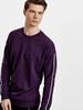 PURPLE - Sweatshirt - 8WG181Z8